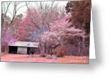 South Carolina Pink Fall Trees Nature Landscape Greeting Card