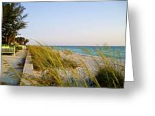 South Florida Living Greeting Card