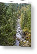 south fork Snoqualmie river Greeting Card