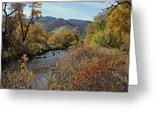 South Platte Greeting Card