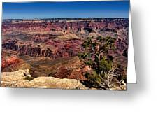South Rim. Grand Canyon Greeting Card