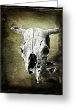 South West Scull Greeting Card