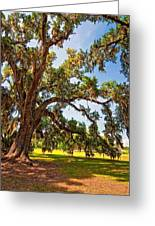 Southern Comfort Greeting Card