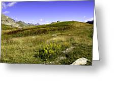 Southern France The Alps Greeting Card