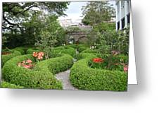 Southern Garden Greeting Card