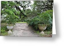 Southern Garden Welcome Greeting Card
