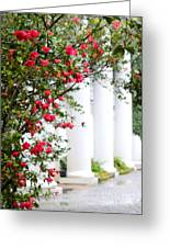 Southern Home - Digital Painting Greeting Card