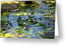 Southern Lily Pond Greeting Card