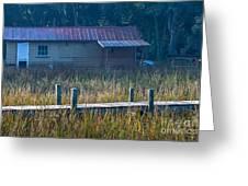 Southern Marsh Greeting Card