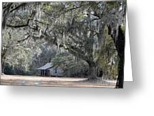 Southern Shade Greeting Card by Al Powell Photography USA