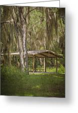Southern Shade Greeting Card