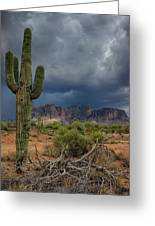 Southwest Monsoon Skies  Greeting Card