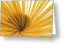 Spaghetti Spiral Greeting Card