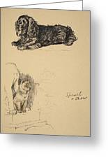 Spaniel And Chow, 1930, Illustrations Greeting Card