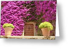 Spanish Door With Bougainvillea Greeting Card