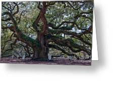 Spanish Moss Draped Limbs Greeting Card