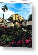 Spanish Steps In Rome Greeting Card