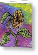 Spanish Sunflower Greeting Card