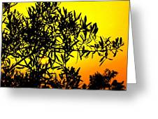 Spanish Sunshine - Espana Greeting Card