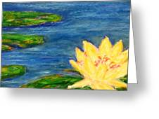 Sparking Lillies Greeting Card