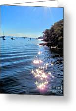 Sparkles And Twinkles Greeting Card