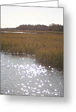 Sparkling  Marsh Greeting Card