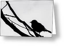 Sparrow In A Gray Sky Greeting Card