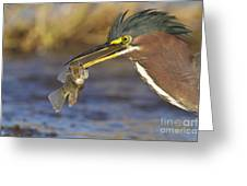 Speared Greeting Card