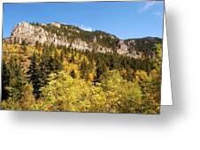 Spearfish Canyon Ridge Greeting Card