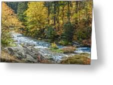 Spearfish Creek Autumn Greeting Card