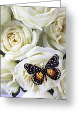 Speckled Butterfly On White Rose Greeting Card