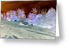 Spectral Wilderness And Copper Sky Greeting Card