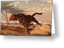 Speeding Cheetah Greeting Card by Daniel Eskridge
