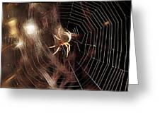 Spider - Building A Ferris Wheel Greeting Card