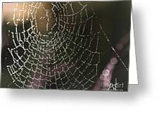 Spiderweb Green Greeting Card by Artist and Photographer Laura Wrede