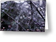 Spiderweb Greeting Card