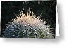 Spike Head In Silver Greeting Card