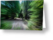 Spinning Through The Woods Greeting Card