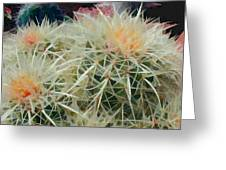 Spiny Barrel Cactus Greeting Card
