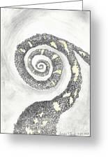 Spiral Greeting Card by Angela Pelfrey