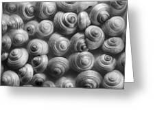 Spirals Black And White Greeting Card by Priska Wettstein