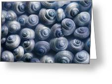Spirals Blue Greeting Card