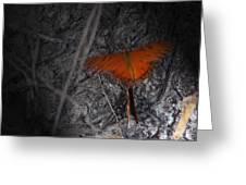 Spirit Butterfly Greeting Card by Ella Char