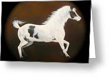 Spirit Horse Drum  Greeting Card