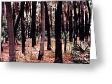 Spirit In The Trees Greeting Card by Steven Valkenberg