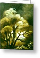 Spirit Of The Tarairi Tree Greeting Card by Patricia Howitt