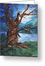Spirit Tree Greeting Card
