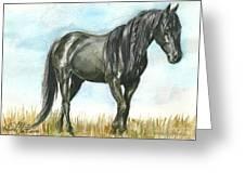 Spirit Wild Horse In Sanctuary Greeting Card by Linda L Martin