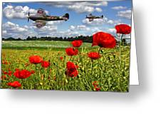 Spitfires And Poppy Field Greeting Card