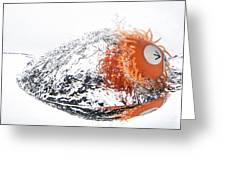 Splashie Greeting Card
